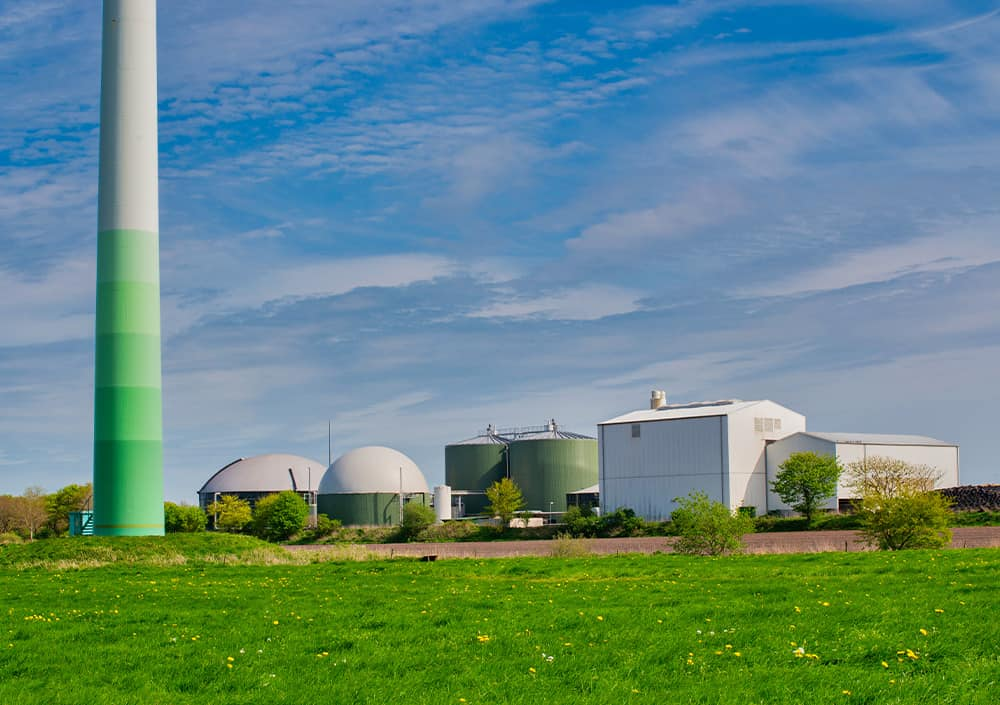 what-is-biomass-energy-different-biogas-energy